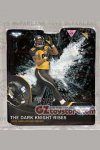 McFarlane - NFL Sports Picks The Dark Knight Rises Hines Ward (Gotham Rogues)