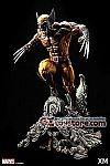 XM Studios - Wolverine Brown 1/4 Scale Premium Collectibles Statue